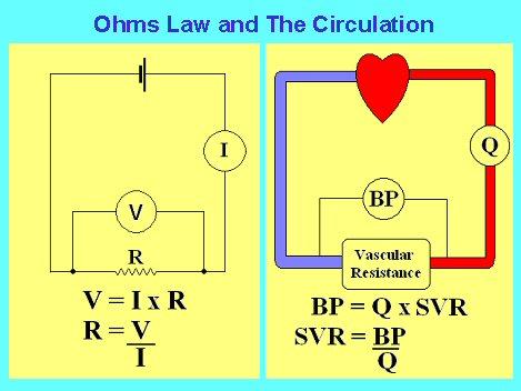 The Uscom And Hemodynamics Basics